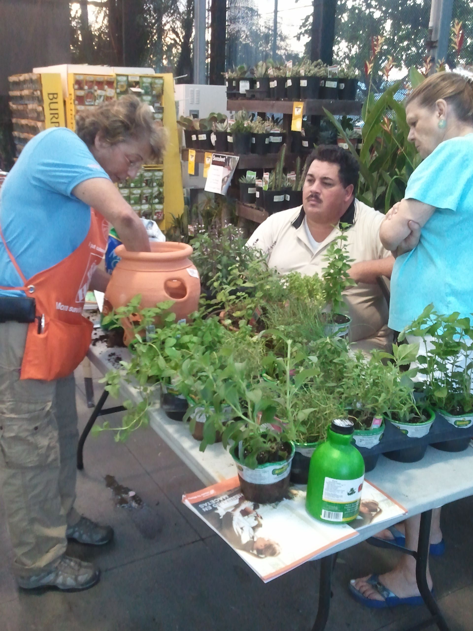 Herb container gardening, May 2012. Home depot store