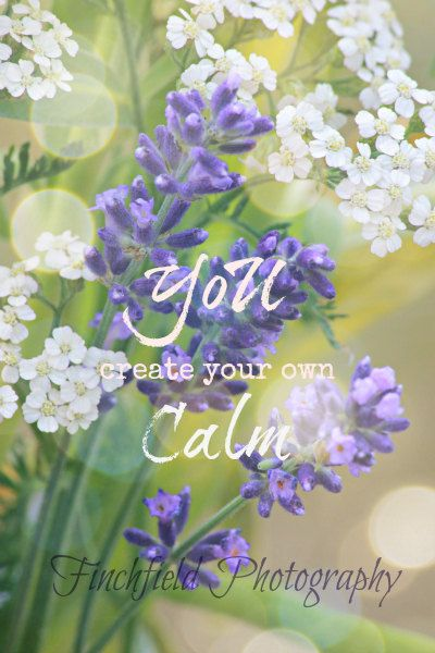 Calm Nature Photography Lavender Famous Quote By Finchfieldart 30 00 Lavender Quotes Nature Photography Flower Quotes