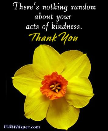 40+ Best Thank You Messages for your Kindness