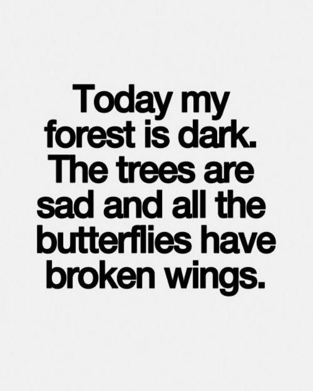 """""""Today my forest is dark. The trees are sad and all the butterflies have broken wings"""""""