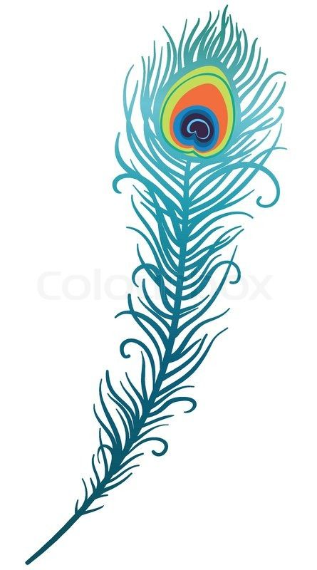 VECTOR Peacock feather clipart | Creative, Peacock feathers and ...