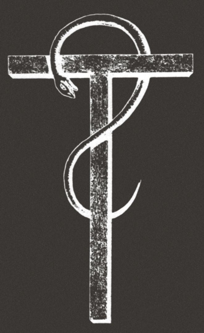 An Alchemical Rebus Of A Crucified Snake A Secret Symbol Of The