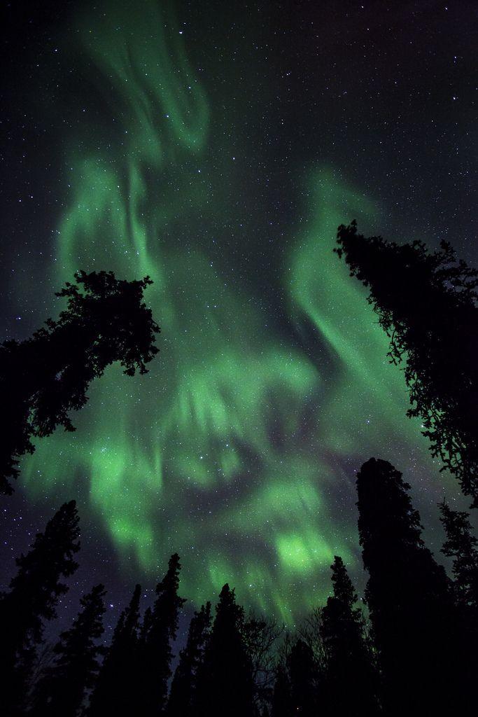 Aurora on 2/19/12 (USA) by Jacob W. Frank Photography | Website