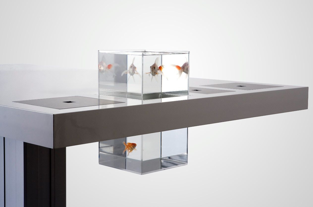 Modern and Stylish Computer Desks Designs: Cool Stainless Steel Milk Desk  Goldfish Design
