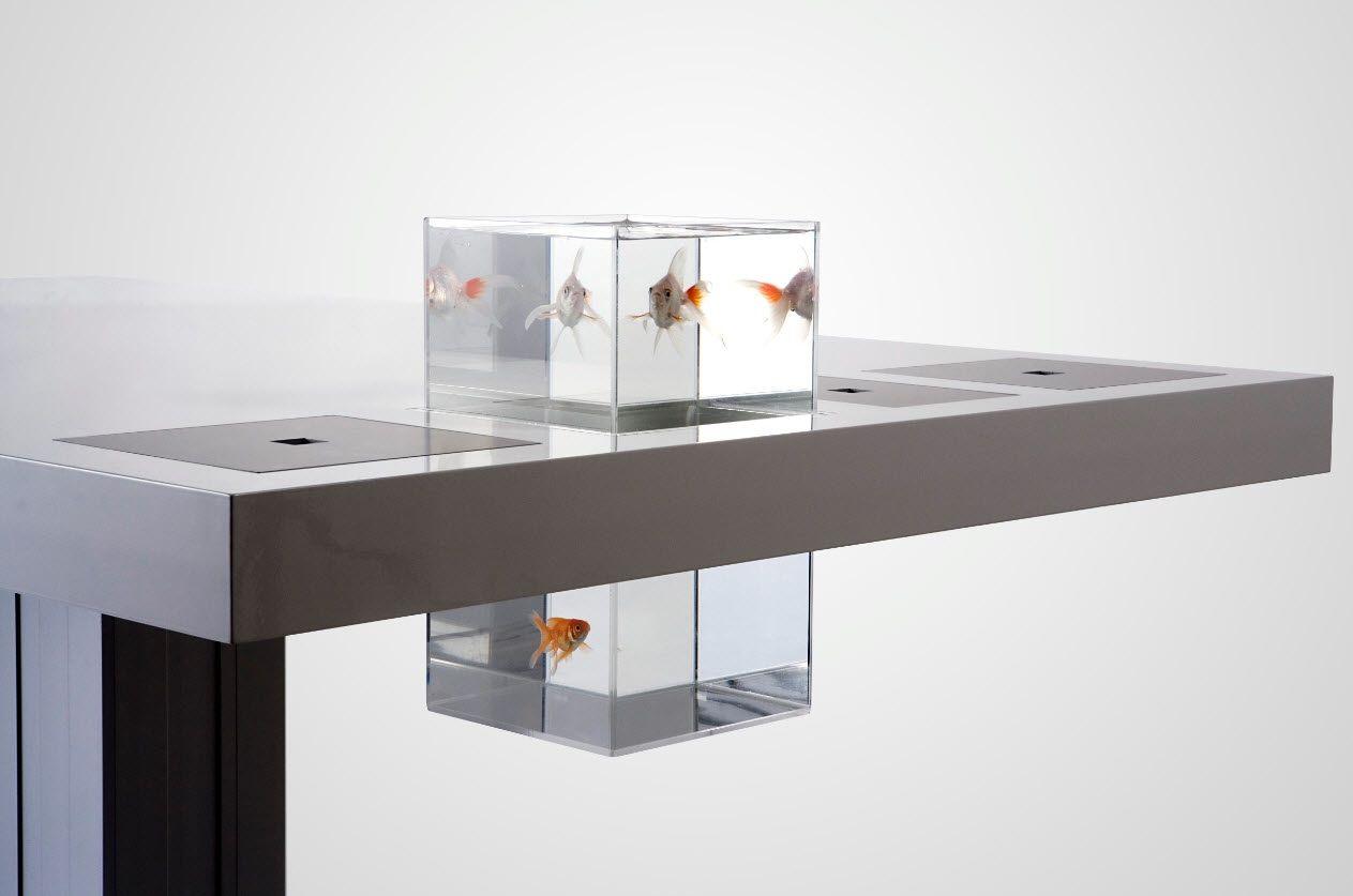 Amazing Milk Desk Goldfish Picture furniturecabinetstorage