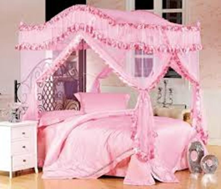 Image Result For Girl Canopy Bed Ideas