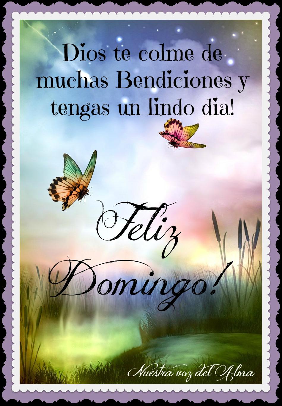 Feliz Domingo Dios Te Colme De Muchas Bendiciones Y Tengas Un Lindo