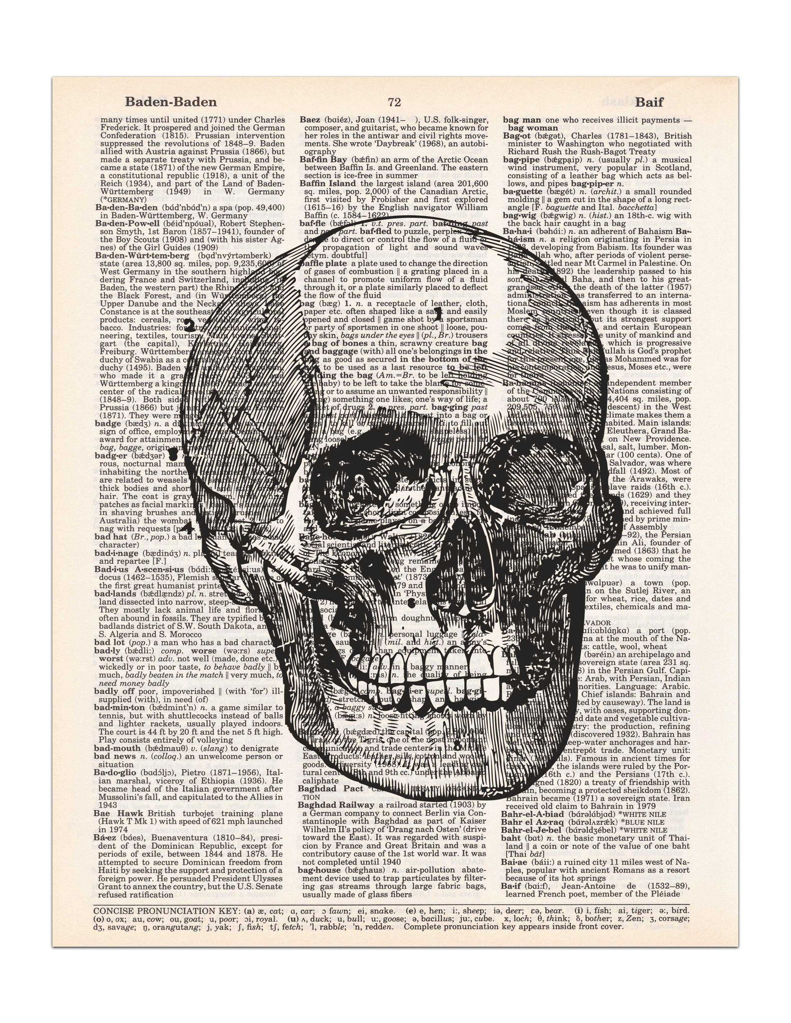 Skull - Vintage Anatomy Drawing - Dictionary Print | Anatomy ...