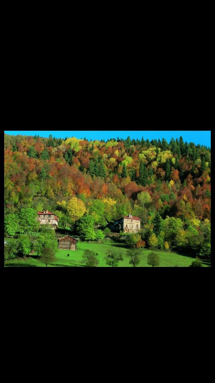 Küre mountains national park-Kastamonu-Bartın