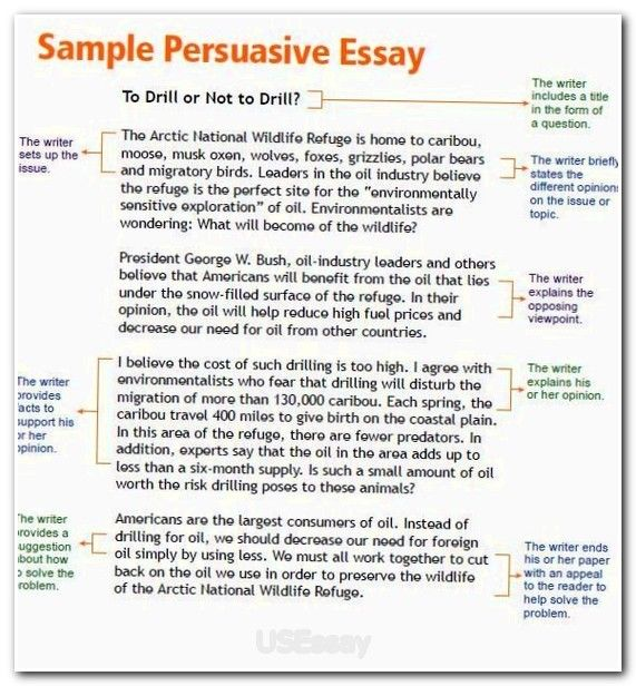 problems of life essay write