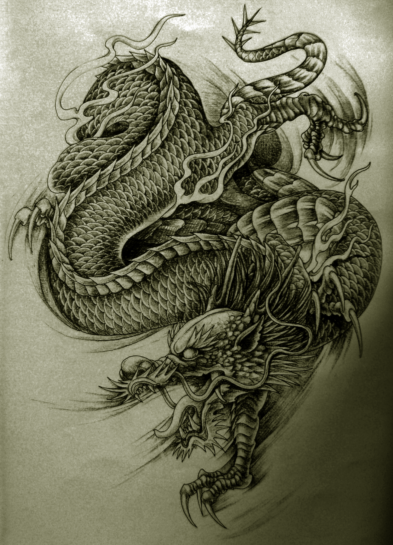 Pin by Landon Cole on Tattoos Dragon tattoo designs