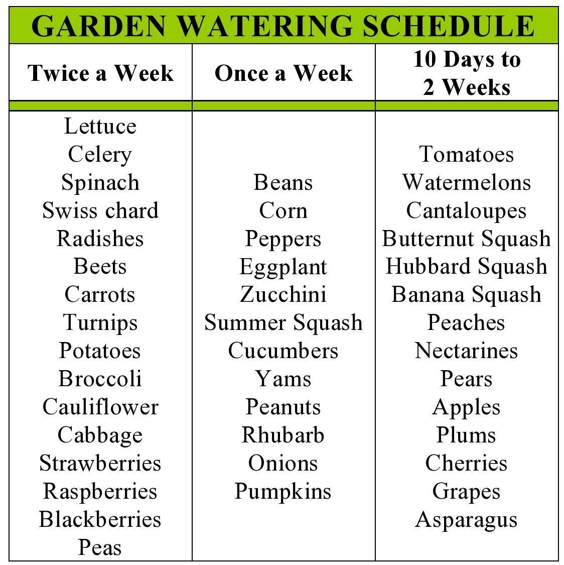 Photo of Garden+Watering+Schedule.jpg 1,124×1,125 pixels