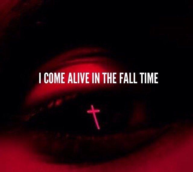 I Come Alive In The Fall Time The Weeknd Quotes The Weeknd Quotes Tumblr Music Quotes Lyrics