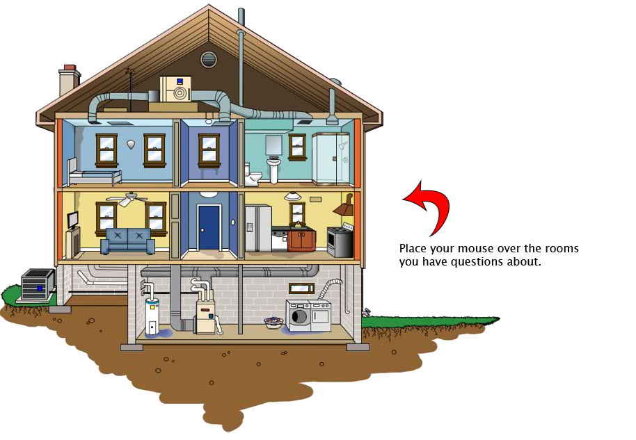 Help With Your Mold Problems And Information About Mold Casas