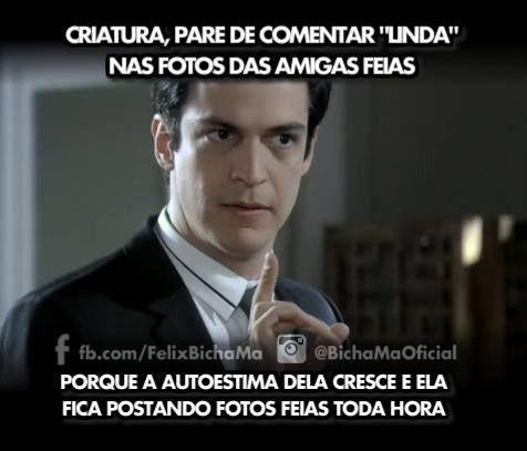 02042014 Funny Bear Pinterest Facebook Mundo E Lindos