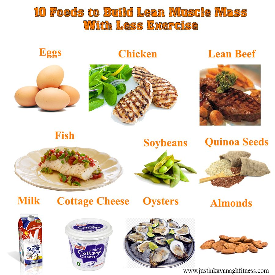 foods for an all protein diet workout