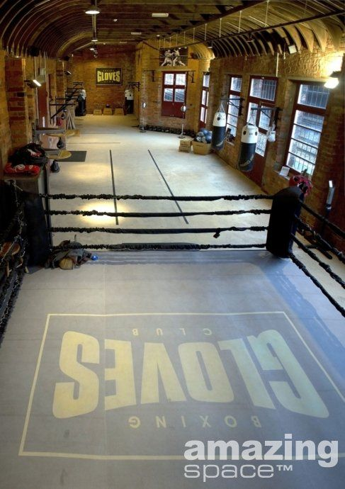 boxing ring | My Shapeshifter Series Inspiration Board | Mma gym
