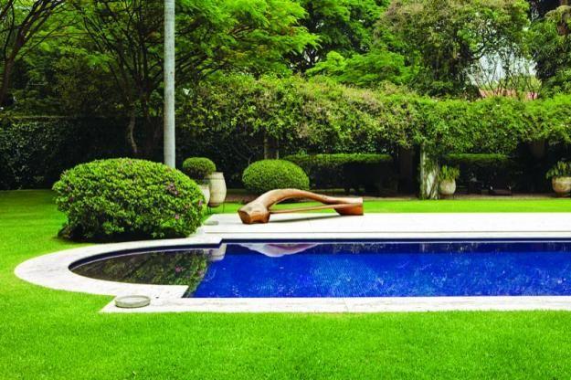Sao Paulo garden by Leo Laniado