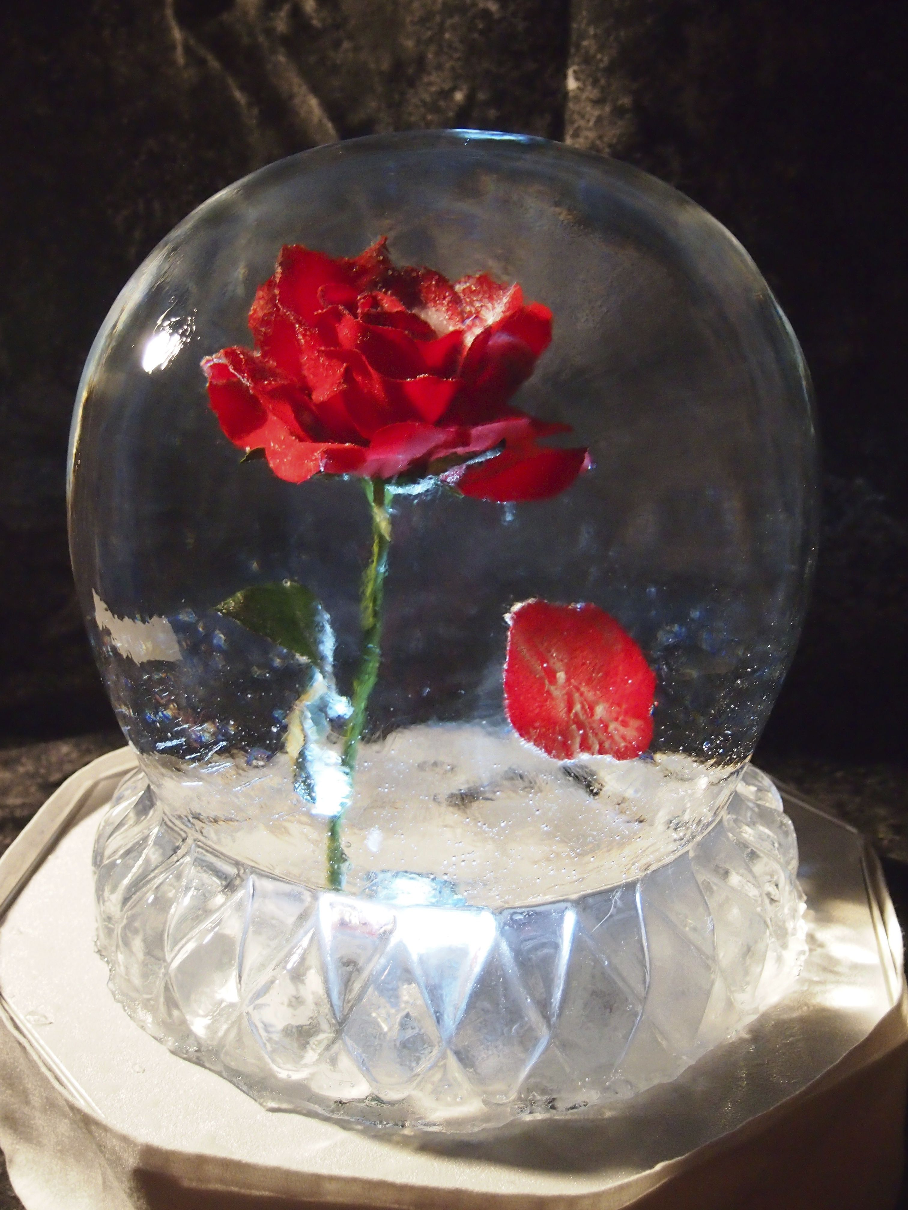 Wedding Table Centerpiece - Ice Sculpture Globe with pedal falling ...