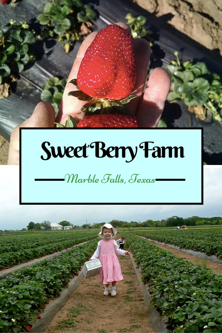 63bb97e3b3d1bd7eed4c3636521e1f16 - Newcomers Guide To Gardening In North Texas