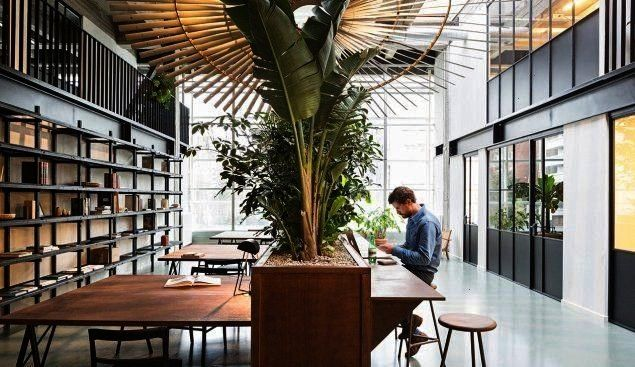 Sons  Antwerp BelgiumThis coworking space relies on plant life of varying type and size as a key design element as seen here in the office library Design firm Going East...