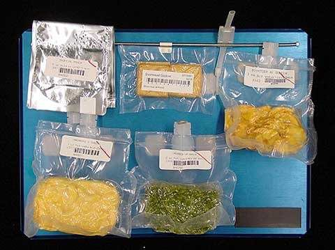 what did astronauts eat in space - photo #13