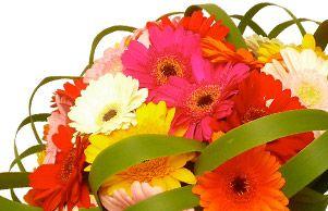 3d3451d0374787 Comment utiliser un code promo 123 Fleurs     Codes promo   bons ...