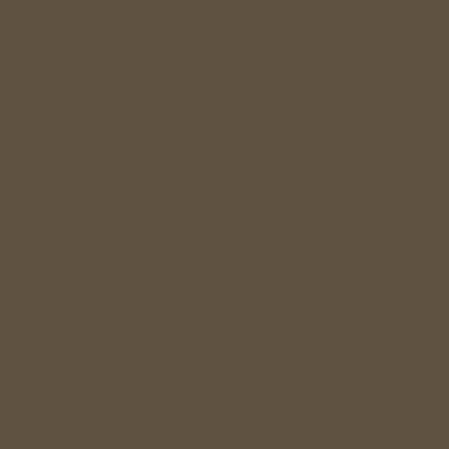 Brown Background Solid