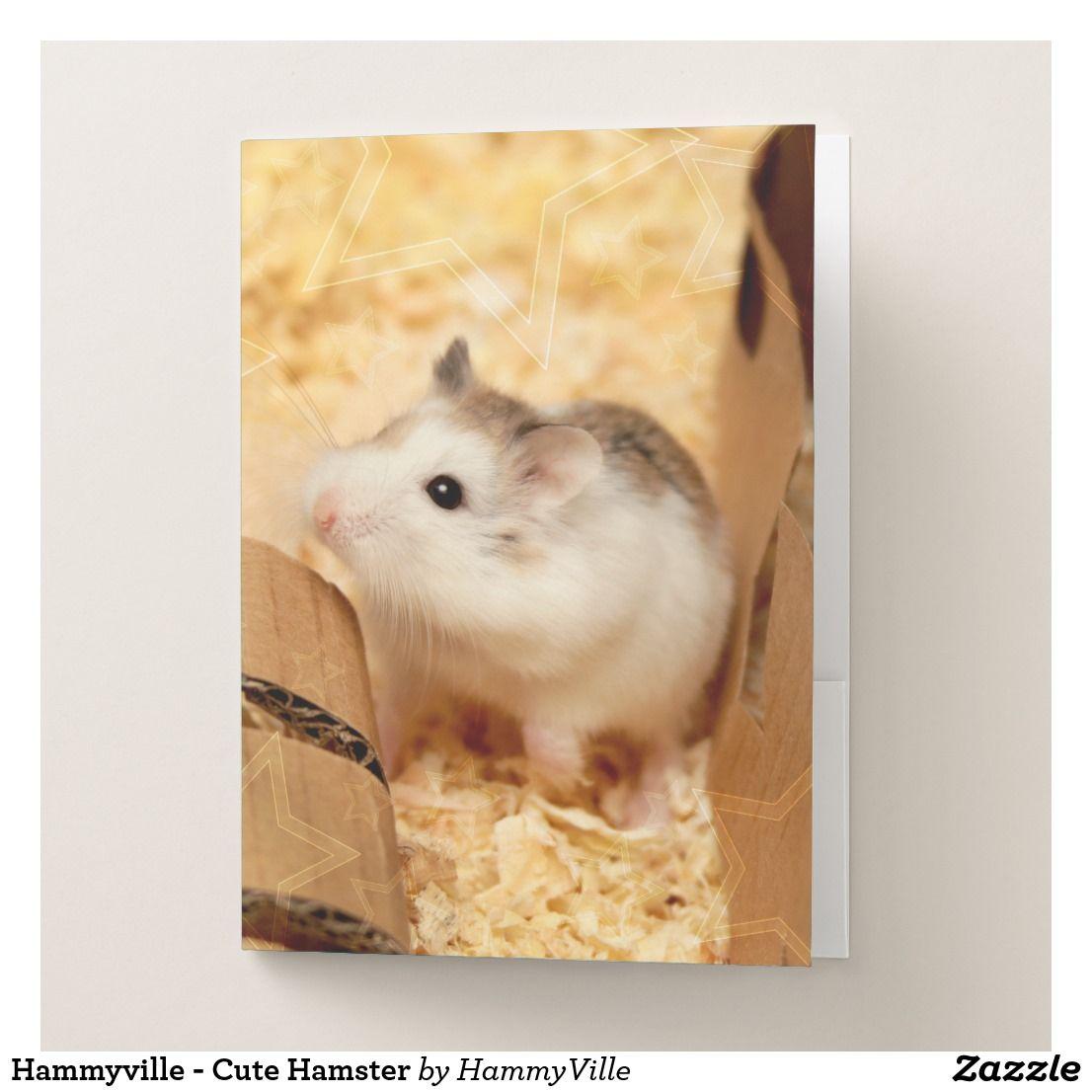 Hammyville Cute Hamster Pocket Folder Zazzle Com Cute Hamsters Hamster Cute Animals