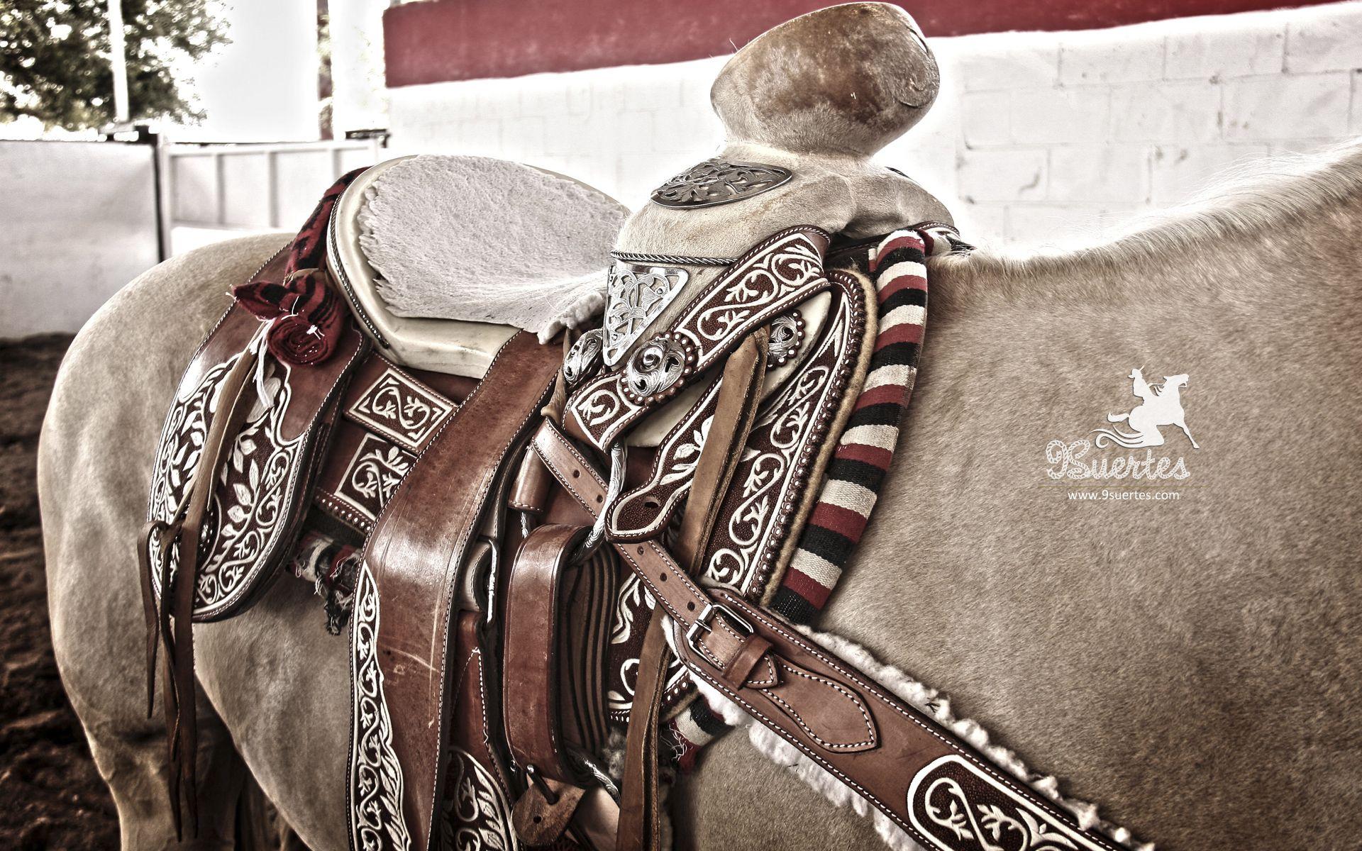 Caballo y su montura charra charro pinterest for Monturas para caballos
