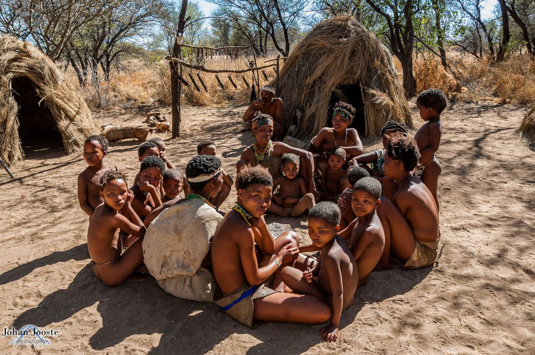 people of the kalahari the kung Available in: paperback this classic, bestselling study of the kung san, foragers of the dobe area of the kalahari desert describes a people's.