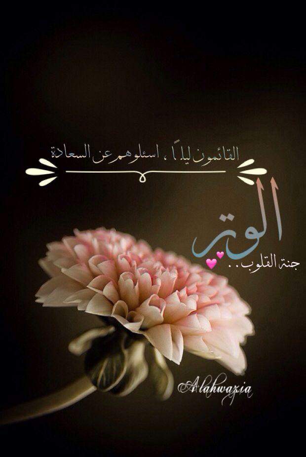 الوتر جنة القلوب Holy Quran Muslim Quotes Islam