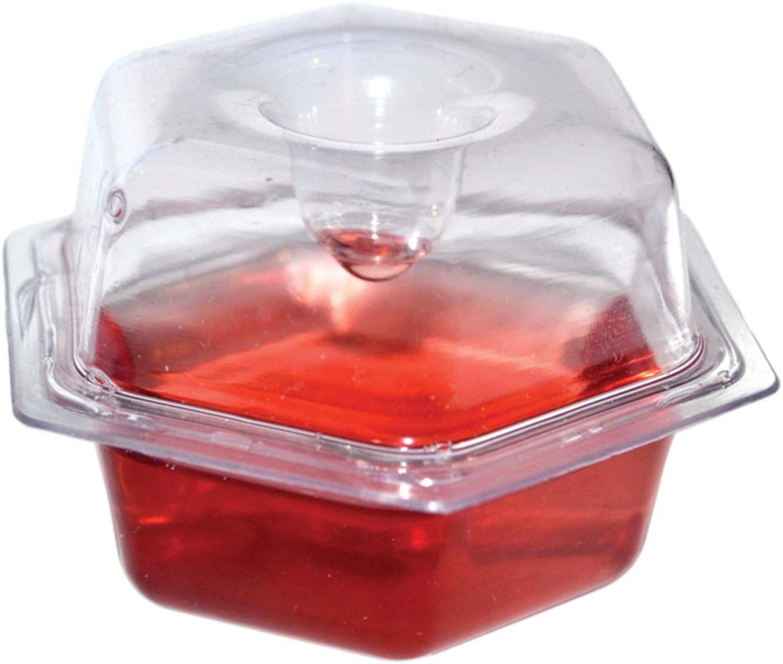 Beapco 10036 prefilled fruit fly traps 6