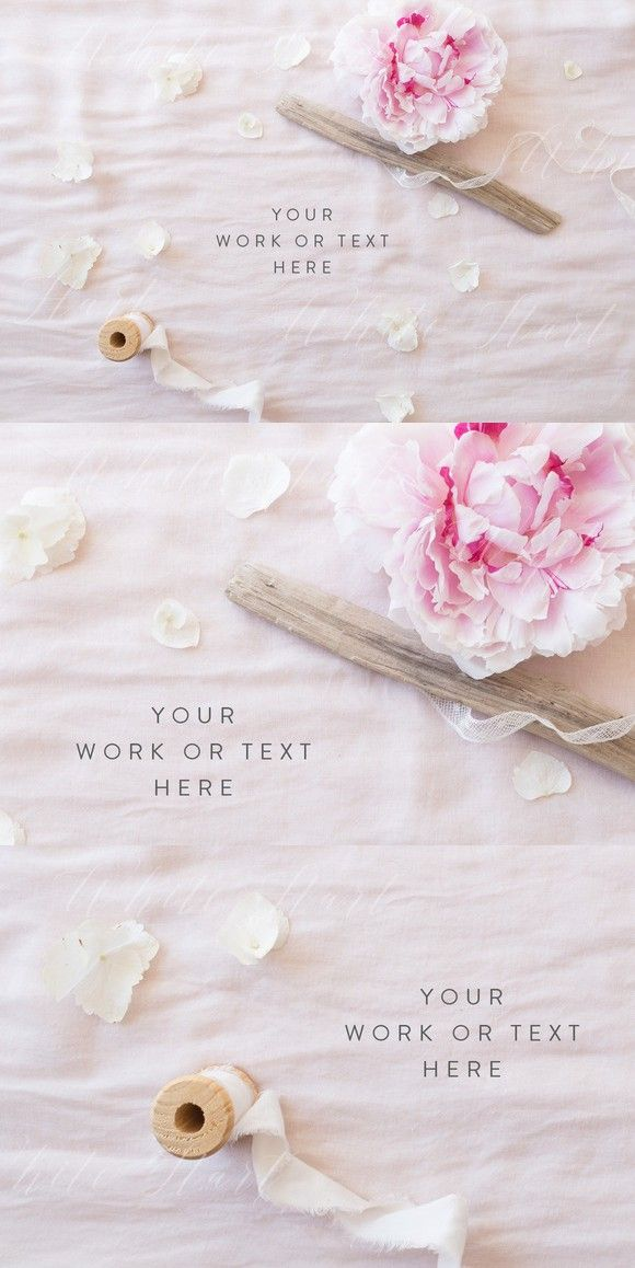 Peonies and silk styled stock photo