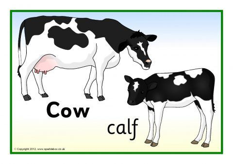 Farm Animals And Their Young Posters Sb7666 Animals Farm Animals Animal Posters