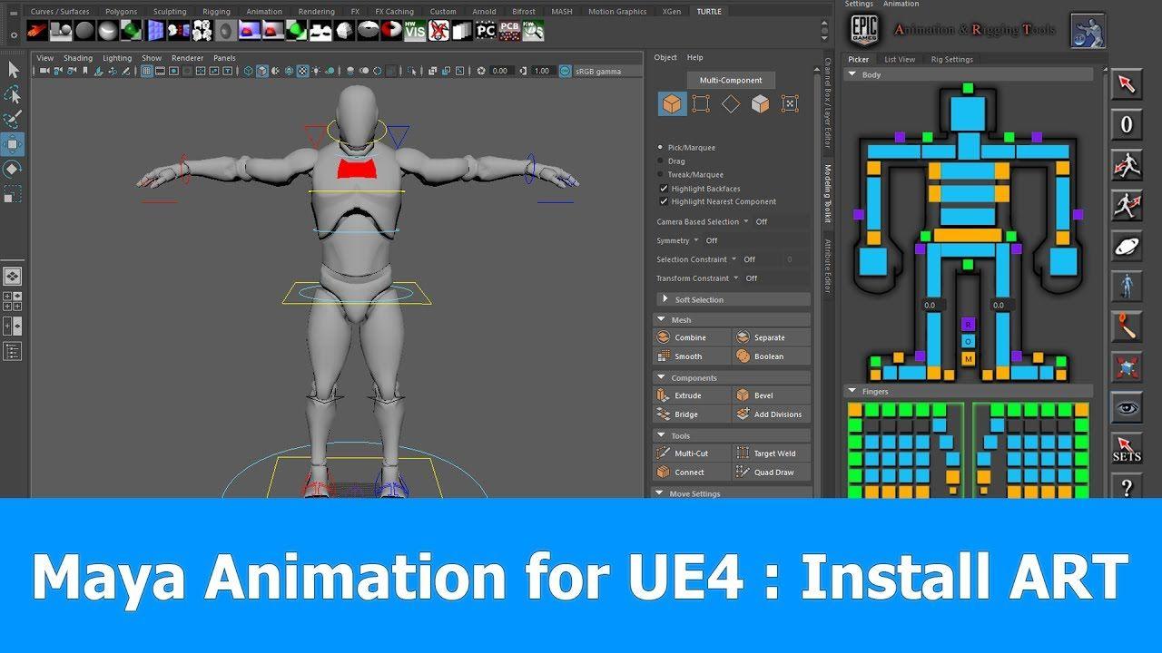 Maya 2017 animation rigging for unreal engine install art animation malvernweather Images
