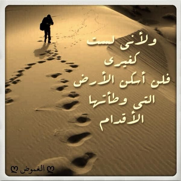 Pin By Abrar On أغنيتي My Song Arabic Words Arabic Quotes Words