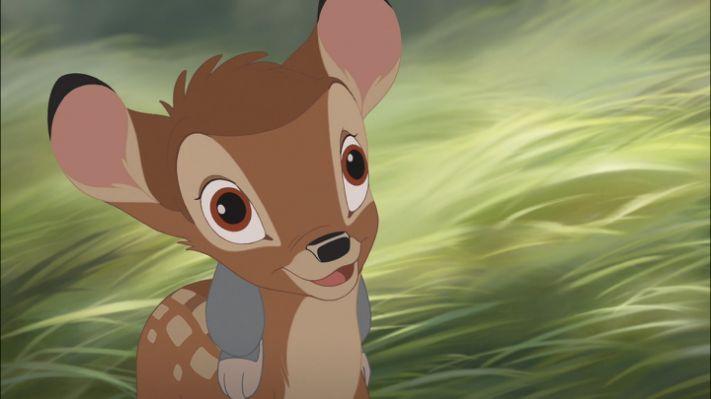 Bambi II (2006) - Disney Screencaps | Disney's ~ Bambi and Friends