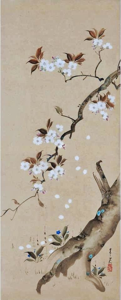 Suzuki Kiitsu 19th Century Cherry Blossoms Japanese Wall Panel