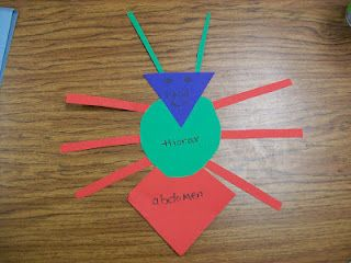 Insect Craft I Will Use As A Shape Reinforcement Lesson For My 3