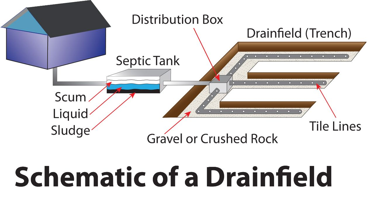 Septic Tank Installation Diagram these pipes or tile