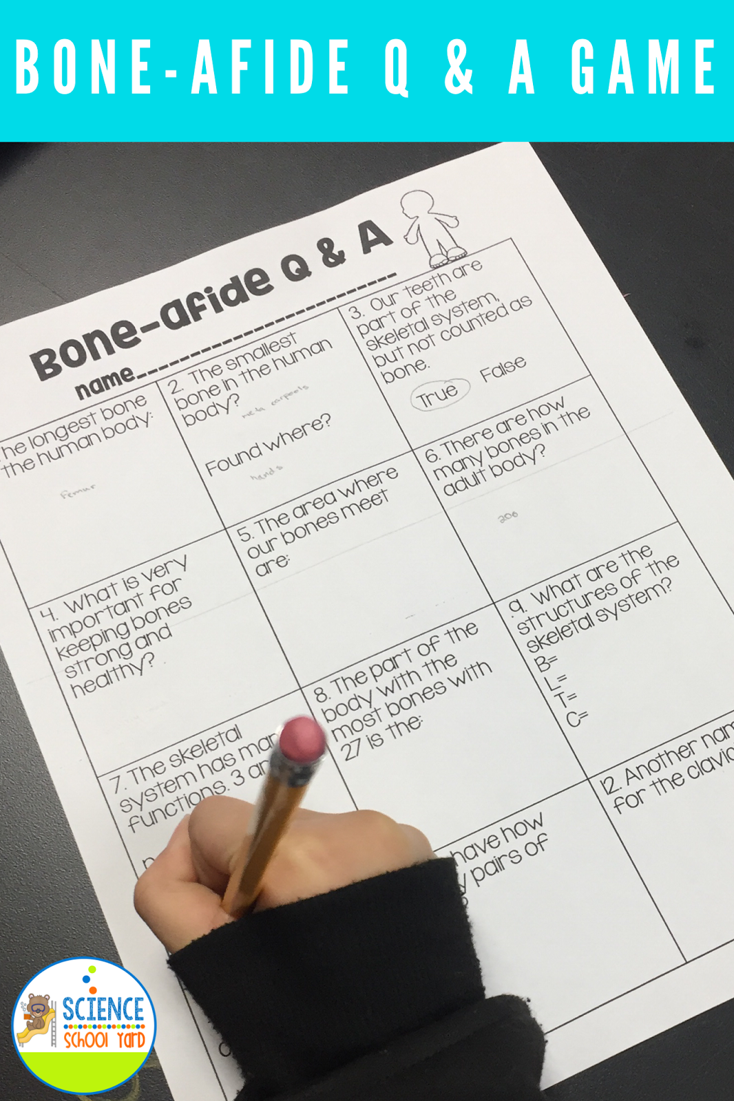 6 Skeletal System Game Ideas For Studying Bones