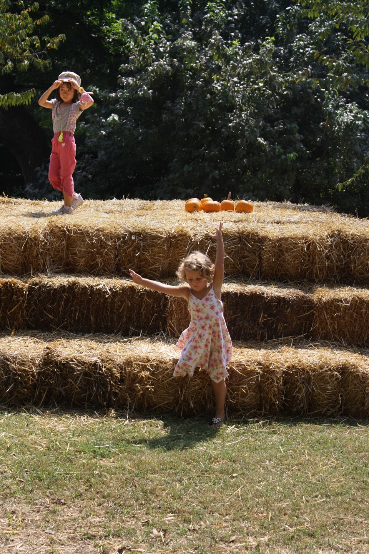Botanic Gardens, Fort Worth, Texas. Girls on hay