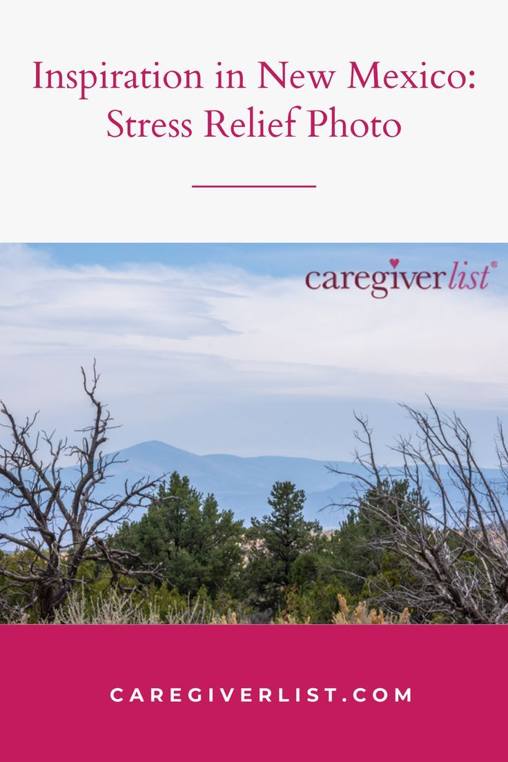 Pin on Caregiver Guide