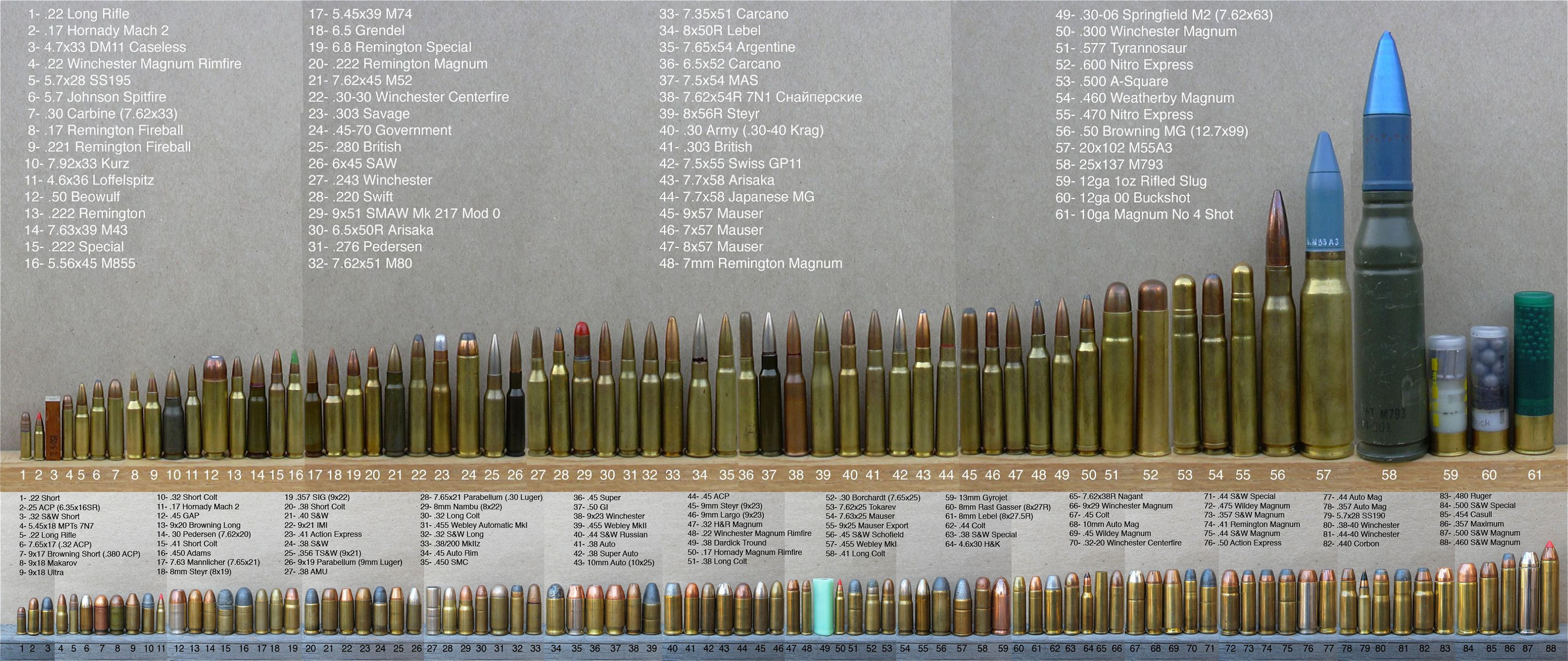 hight resolution of complete rifle ammunition guide size comparison
