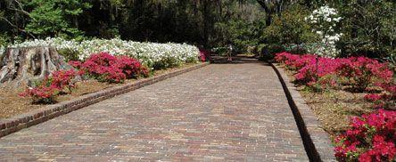 63c6b3f70f1e60868b6a5225c9941049 - Maclay Gardens State Park Tallahassee Florida