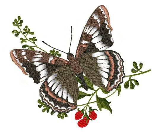google image result for http www best embroidery designs com