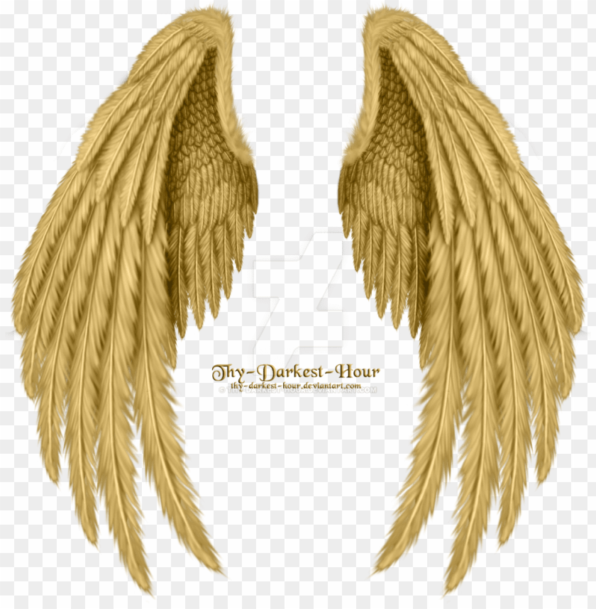 Old Angel Wings Png Image Download Golden Angel Wings Png Image With Transparent Background Png Free Png Images Angel Wings Png Wings Png Angel Wings Drawing