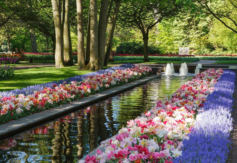 the most beautiful gardens in the world keukenhof garden