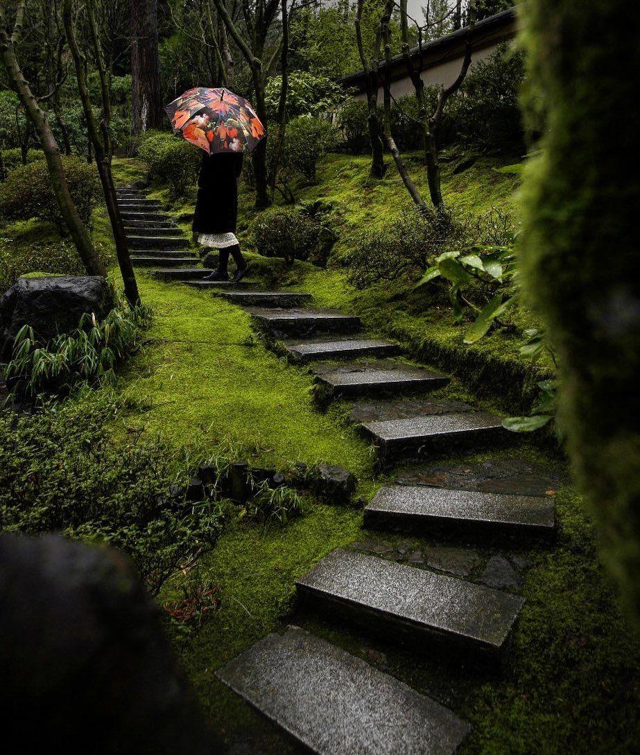 Tucker Marks On Instagram Volunteer At The Portland Japanese Garden Jardim Japones Jardim Interior Jardim